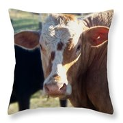 What You Lookin' At Throw Pillow