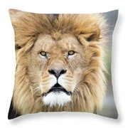 What You Looking At? Throw Pillow