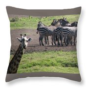 What You Say Throw Pillow