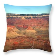 Whata View Throw Pillow