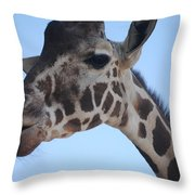 Whatcha Looking At? Throw Pillow