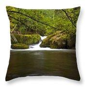 Whatcom Creek Gorge Throw Pillow