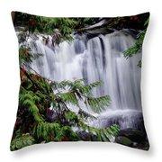 Whatcom Falls Cascade Throw Pillow