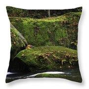 Whatcom Falls Park Throw Pillow