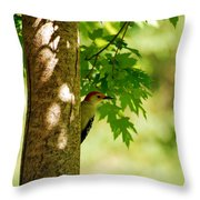 Whats A Woodpecker To Do Throw Pillow