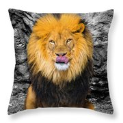 What's For Breakfast? Soc Throw Pillow