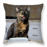 What's For Dinner? Throw Pillow