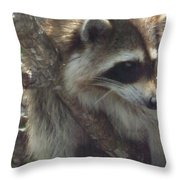 What's Happening Throw Pillow