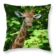 What's On Throw Pillow