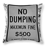 What's Wrong With This Sign Throw Pillow