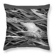 Wheat And Ice Throw Pillow