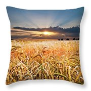 Wheat At Sunset Throw Pillow by Meirion Matthias