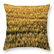 Wheat Beards Throw Pillow