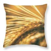 Wheat Ear Throw Pillow