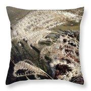 Wheat Feathers Throw Pillow
