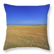 Wheat Field After Harvest Throw Pillow