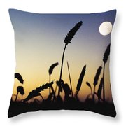 Wheat Field, Ireland Wheat Field And Throw Pillow