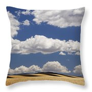 Wheat Fields In Western Colorado Throw Pillow