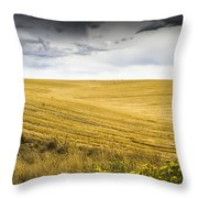 Wheat Fields With Storm Throw Pillow