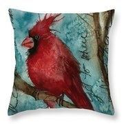 When I Get To Where I'm Going ... Throw Pillow