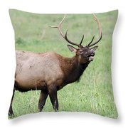 When I'm Calling You... Throw Pillow