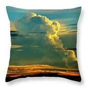 When It Rains In Africa Throw Pillow