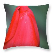 When Sorrow Like Sea Billows Roll... It Is Well With My Soul Throw Pillow