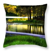 When Summer Glows And Crickets Chirp  Throw Pillow
