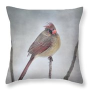 When The Northwind Blows  Throw Pillow