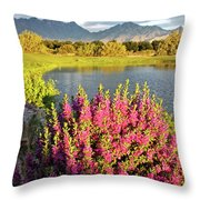 When The Rains Come In The Desert So Do The Blooms Throw Pillow