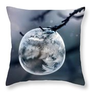 When The World Freezes Throw Pillow