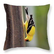 When There's A Will... Throw Pillow