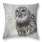 When Winter Calls Owl Art Throw Pillow