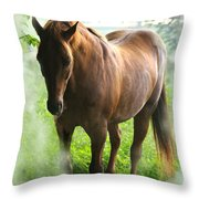 When You Dream Of Horses Throw Pillow