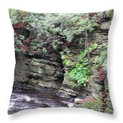 Where A Glacier Has Been Throw Pillow