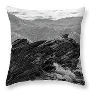 Where Andreas Meets Murray Bw 1 Throw Pillow