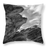 Where Andreas Meets Murray Bw 3 Throw Pillow