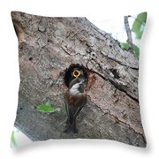 Where Are The Worms? Throw Pillow