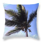 Where Coconuts Come From Throw Pillow