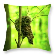 Where Did He Go? Throw Pillow