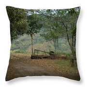 Where Does It Go Throw Pillow