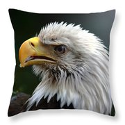 Where Eagles Dare 3 Throw Pillow