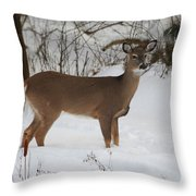 Where Is Everybody Throw Pillow