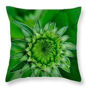 Where It All Starts Throw Pillow