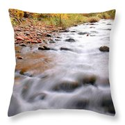 Where Peaceful Waters Flow Throw Pillow