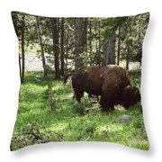 Where The Bison Roam Throw Pillow