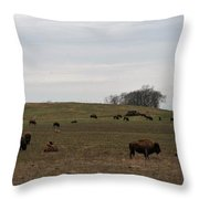 Where The Buffalo Roam 2 Throw Pillow
