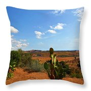 Where The Cactus Grow Throw Pillow