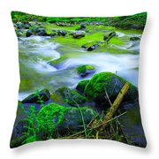 Where The Golden Waters Flow Throw Pillow