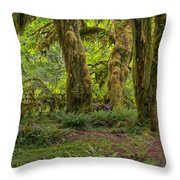 Where The Leprechauns Roam Throw Pillow